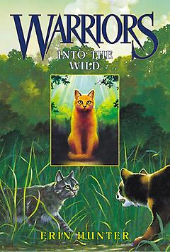 Middle Grade Book – Into the Wild